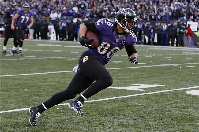 Baltimore Ravens tight end Dennis Pitta